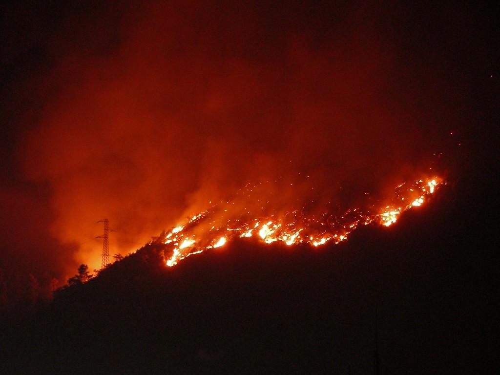 Fiamme altissime sui colli San Rizzo: paura fra la gente