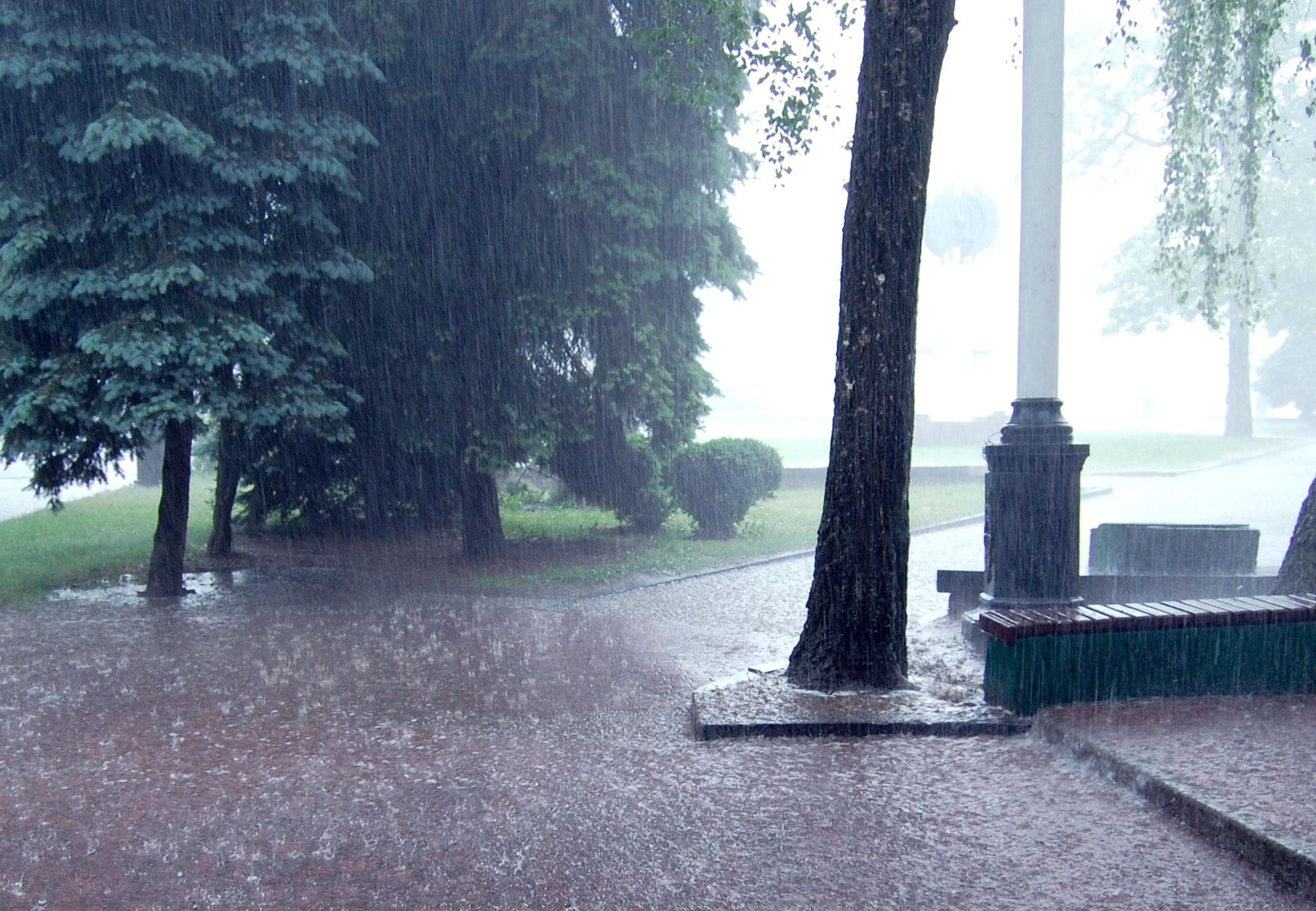 Palermo, pioggia e vento continueranno anche domani: il METEO di domani, 25 gennaio