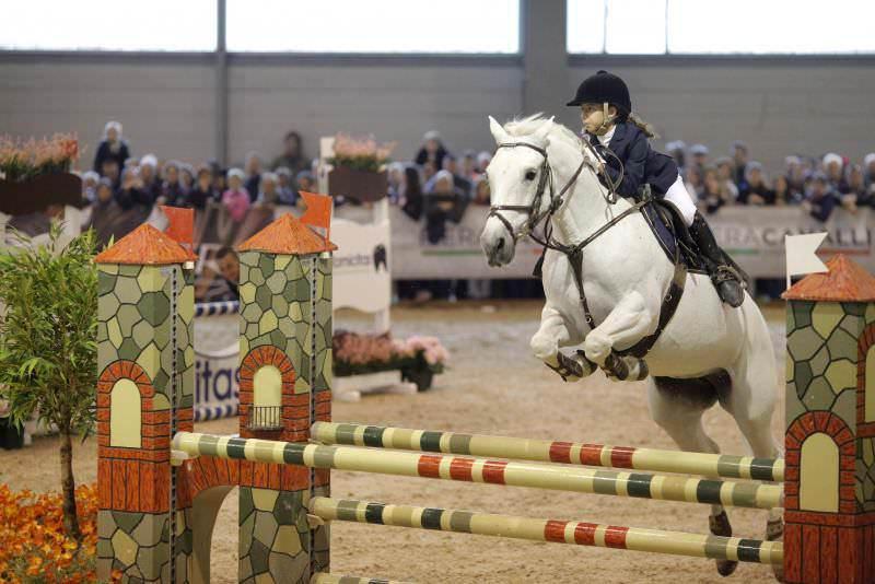 Quattro cavalieri siciliani alle finali nazionali del Progetto Giovani