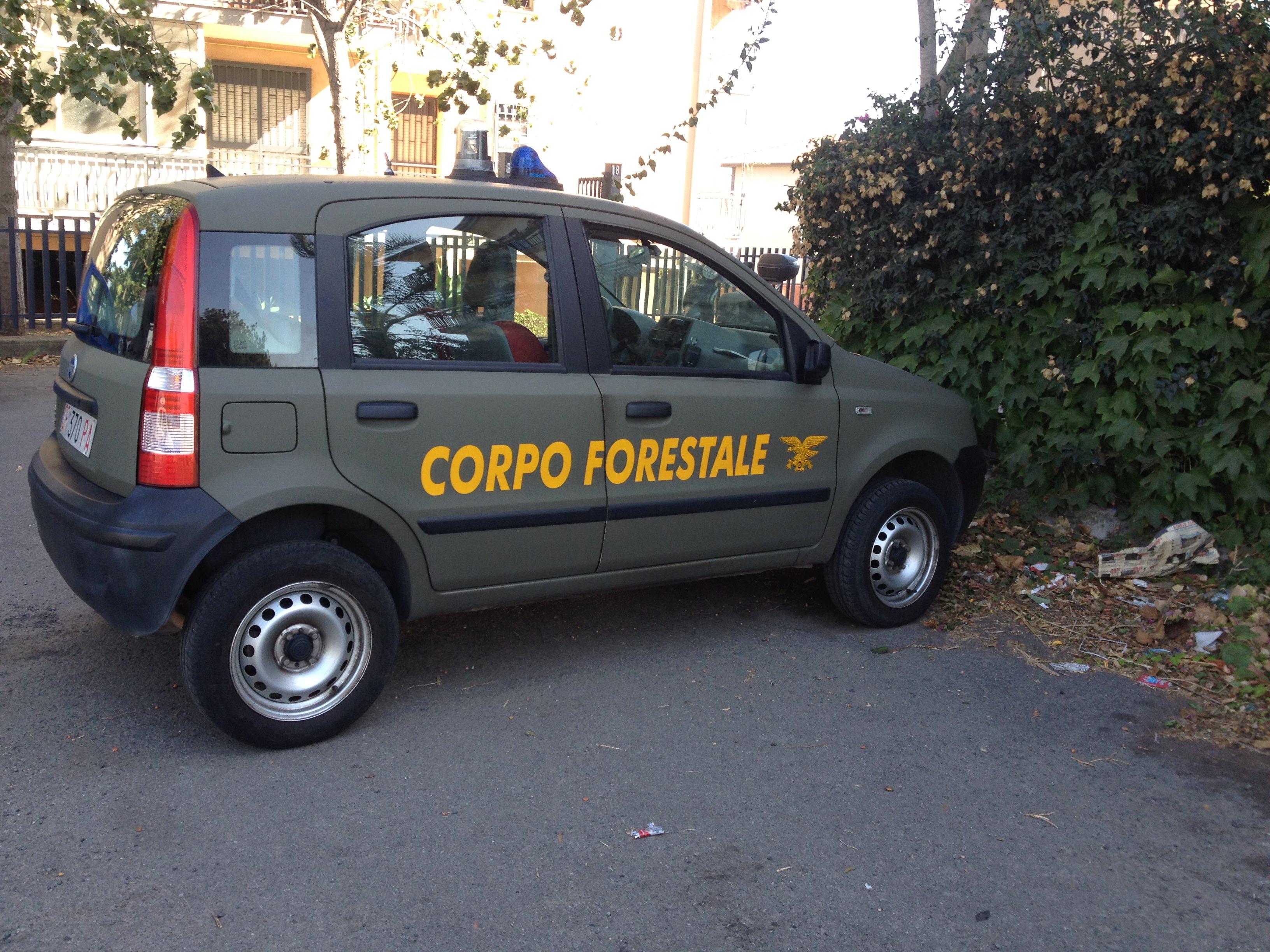 Operaio della Forestale sorpreso mentre appicca incendio a Vendicari