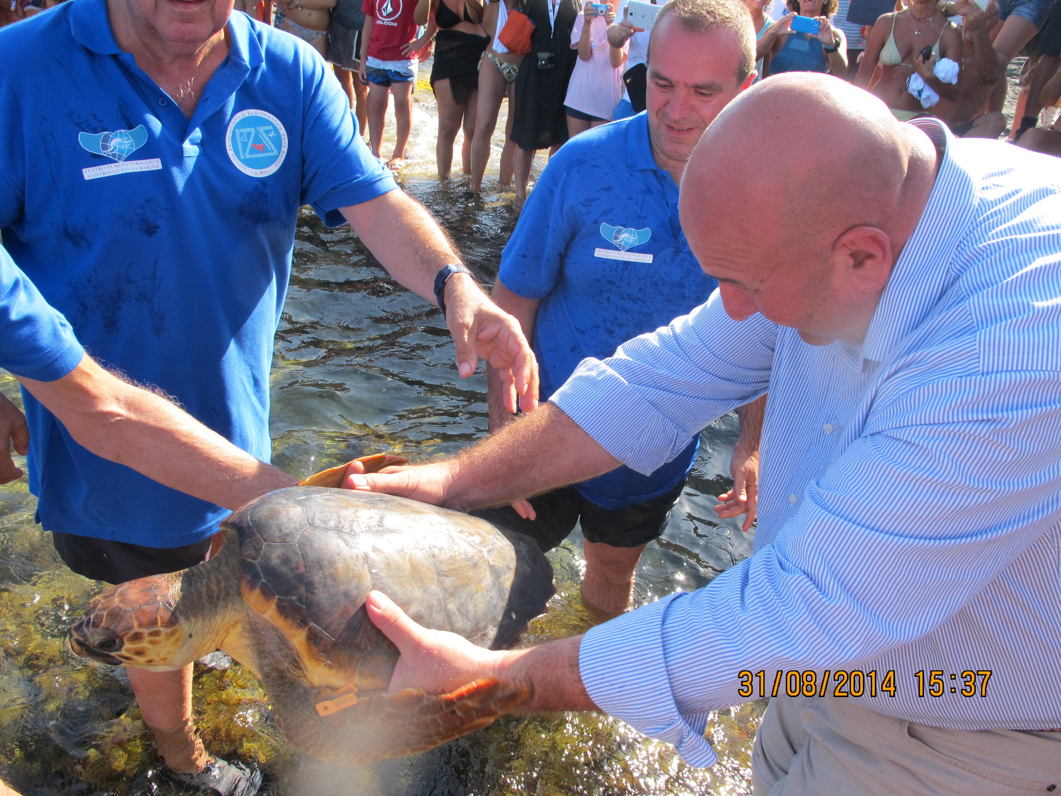 Liberate tre tartarughe a Pantelleria
