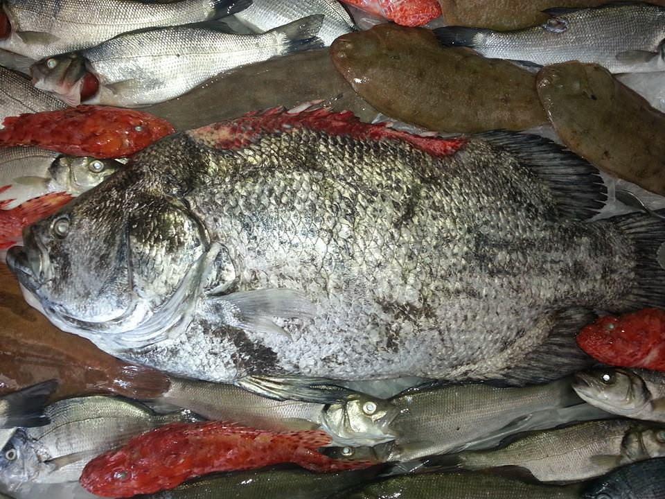 Porto Empedocle: sequestrato pesce avariato