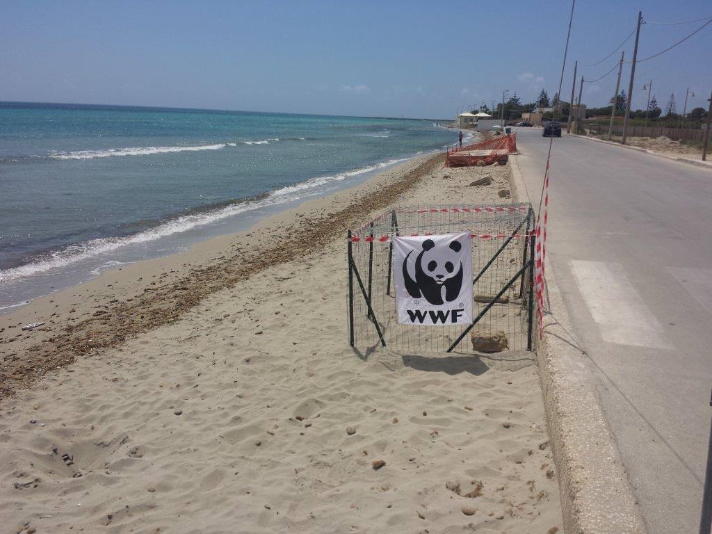 Volontari del WWF in spiaggia … per ripulirla