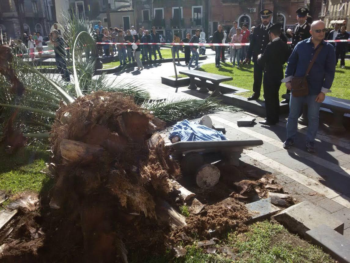 Catania, la donna morta in piazza Cutelli uccisa dal punteruolo rosso