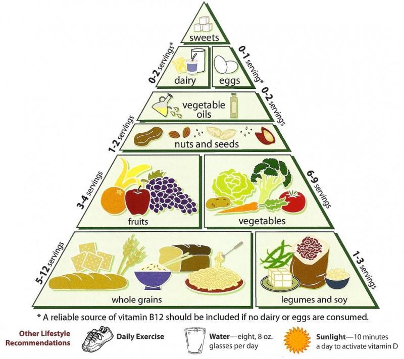 Inizia la settimana mondiale vegetariana