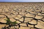 """Siccità: le piogge primaverili """"salvano"""" la Sicilia, ma in estate il pericolo è dietro l'angolo"""