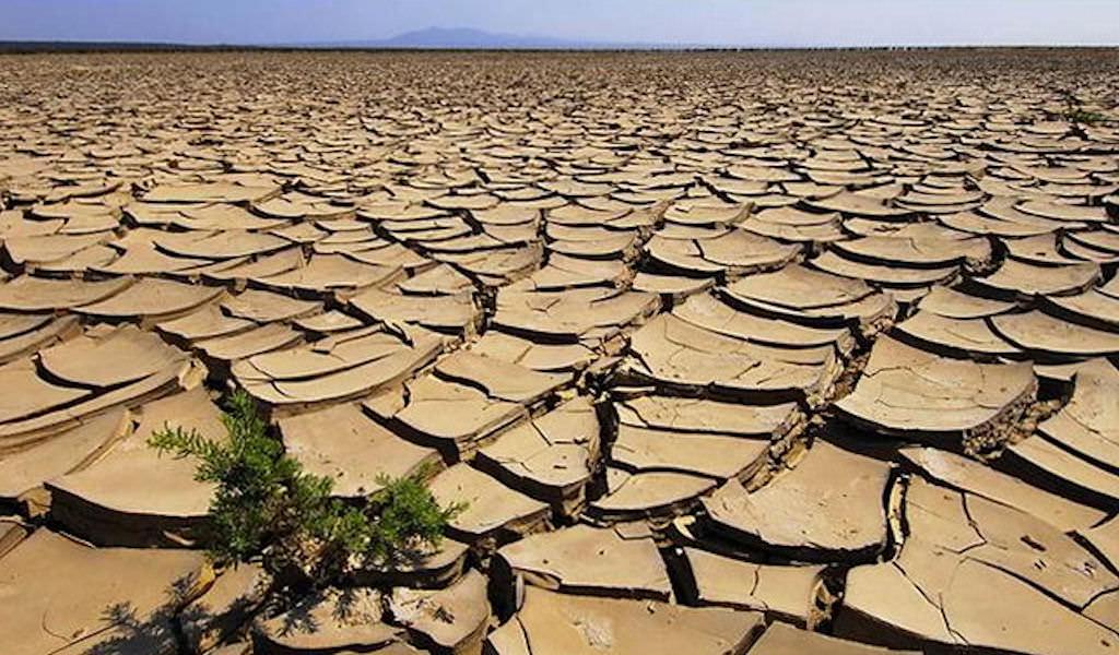 Allarme siccità in Sicilia, si prega per la pioggia: anno più caldo degli ultimi cento anni, non piove da due mesi