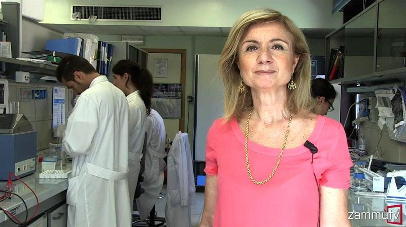 La dieta mediterranea? Un'alleata per prevenire i tumori