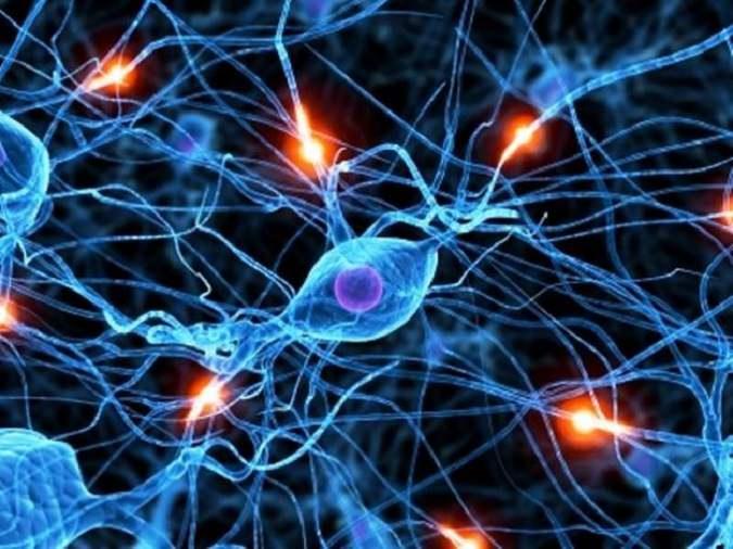 Empatia, quando i neuroni si specchiano…