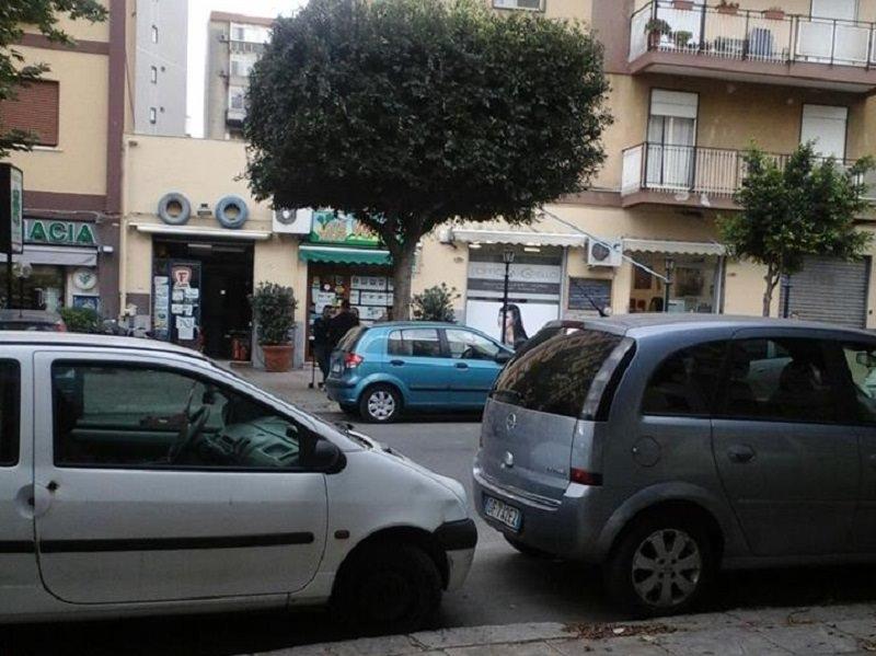"""Palermo, Comune su 82 alberi ne pota solo uno """"su richiesta"""""""