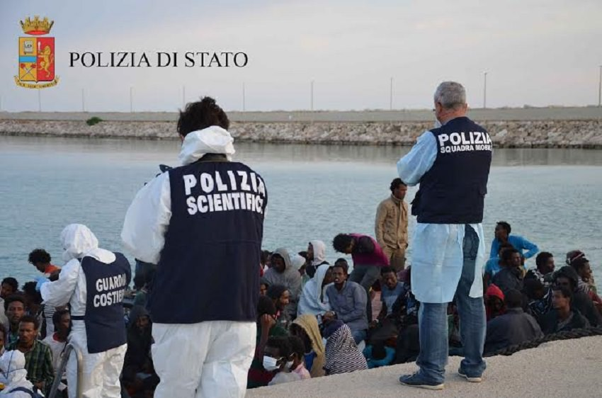 Immigrazione un affare da 2 milioni di dollari newsicilia for Milioni di dollari piantine