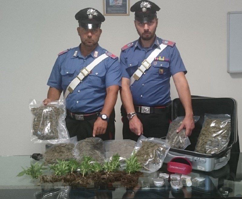 Quando lo spaccio è questione di famiglia: arrestati padre e figlio con quasi due chili di marijuana