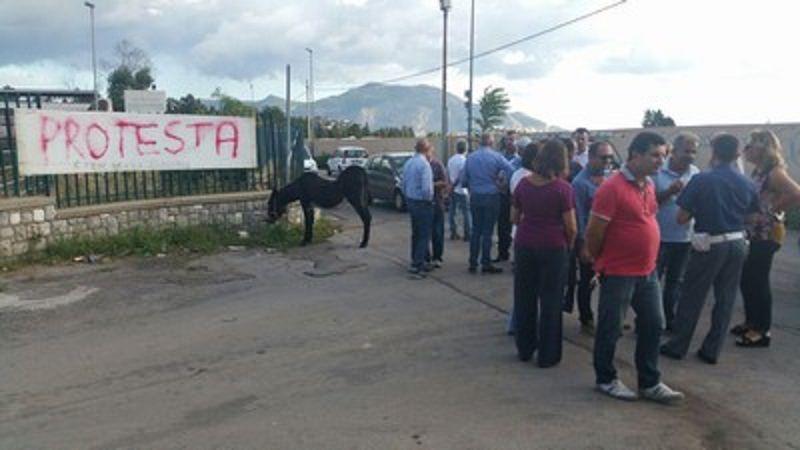 Protestano i dipendenti dell'Istituto Zootecnico siciliano: a rischio mangimi, foraggi e medicinali