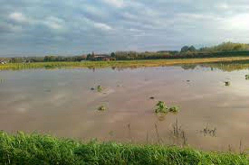 Maltempo nel Catanese, danni gravissimi nelle campagne. Si chiederà stato di calamità