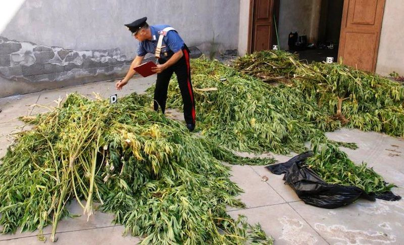 Catania, intercettato carico di droga. Sequestrati 1000 chili di canapa indiana