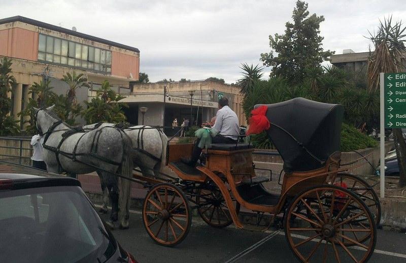Lauree in carrozza: Catania supera se stessa