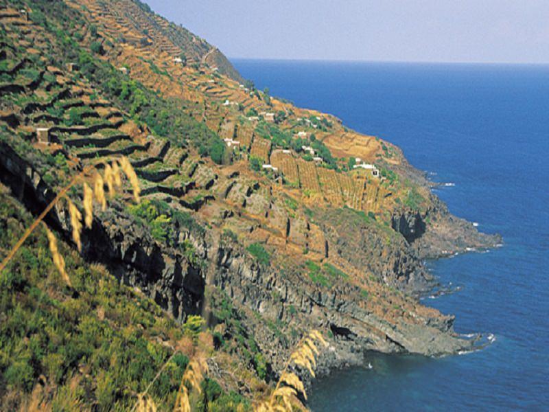 Passitaly 2015 gratifica ed esalta l'attività enologica di Pantelleria
