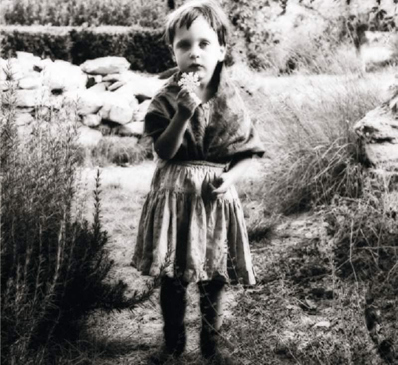 Il segreto delle fragole: l'agenda poetica di quattro autori siciliani