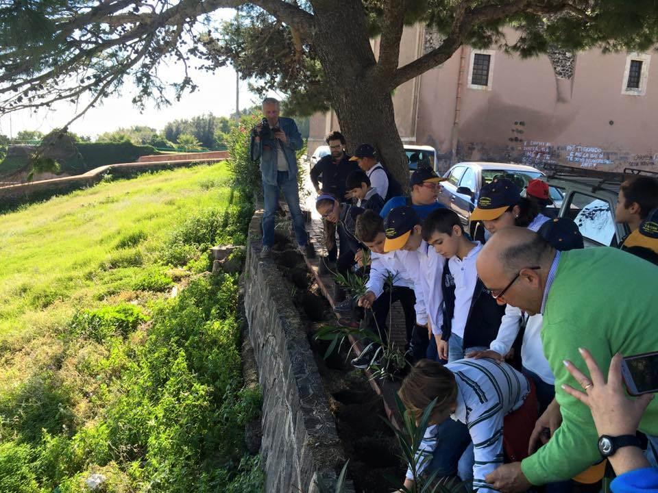 """Festa dell'albero a Paternò: """"Esperienza dal grande valore educativo"""""""