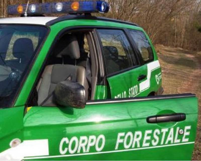 """Catania, i sindacati chiedono immediato avvio al lavoro dei forestali 151isti: """"Molte famiglie disagiate"""""""