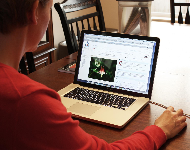 Imparare gratis online? Si può: le risorse culturali nel mondo digitalizzato