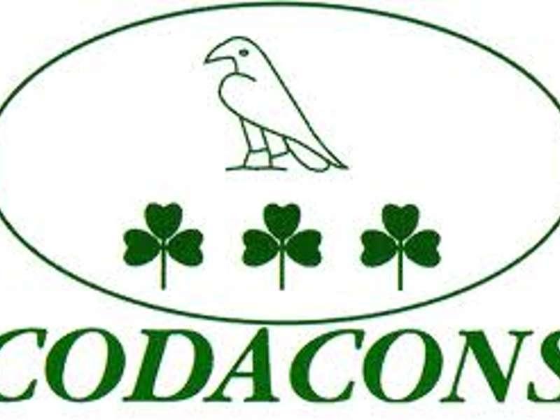 File interminabili a gastroenterologia, protesta del Codacons