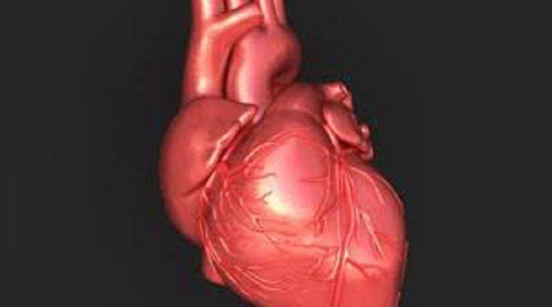 Il dolore toracico di origine cardiaca