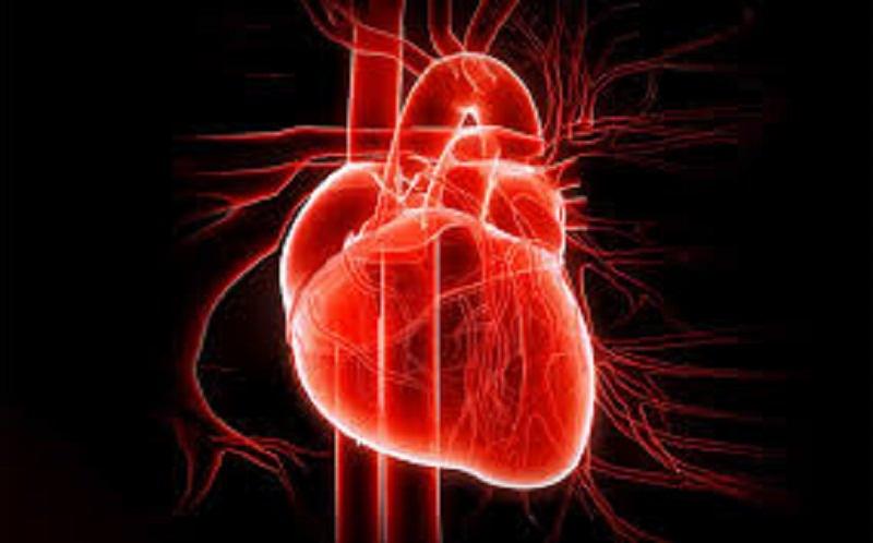 I sintomi che fanno pensare al cuore