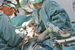 Donna muore in ospedale per emorragia cerebrale: famiglia autorizza espianto organi