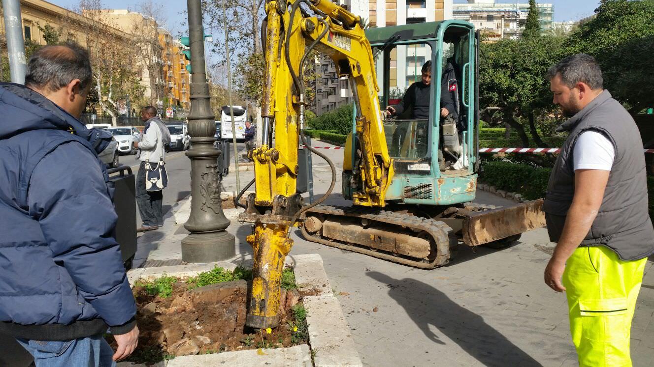Palermo: rigenerato il verde in via della Libertà