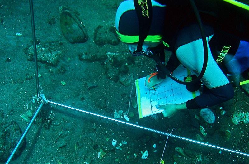 Archeologia subacquea: dal 28 corso a Palermo