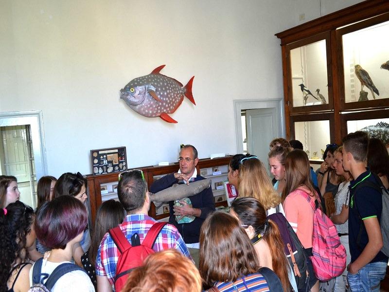 Studenti olandesi scoprono Aci Trezza