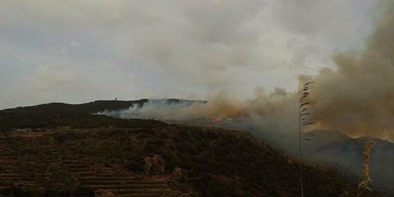 """Pantelleria: spento l'incendio, danneggiati 600 ettari di vegetazione. """"Disastro ambientale"""""""