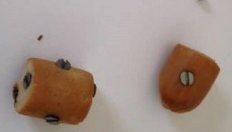 """Catania: chiodi nei wurstel per uccidere i randagi, gli animalisti: """"Enti assenti. Servono canili"""""""