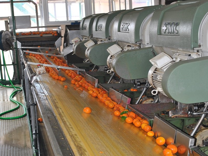 """""""No al blocco delle attività di trasformazione delle arance"""""""