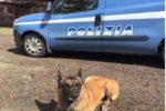 Controlli nei rioni di Catania: droga e armi nascosti in ogni dove. Sequestro a carico di ignoti