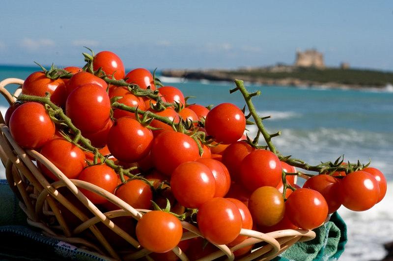 Anno da record per la Sicilia nel settore ortofrutticolo: Catania quarta in Italia per impatto economico