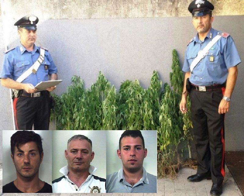 Succede a Catania e provincia: 28 giugno MATTINA