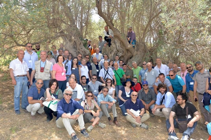 Concluso il primo convegno nazionale sugli Alberi Monumentali
