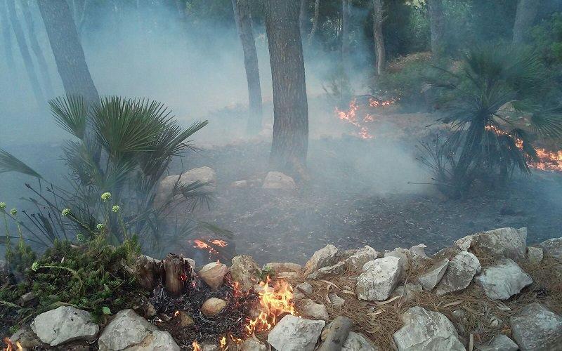 Castellammare ha bisogno di mezzi per affrontare incendi, lettera del sindaco