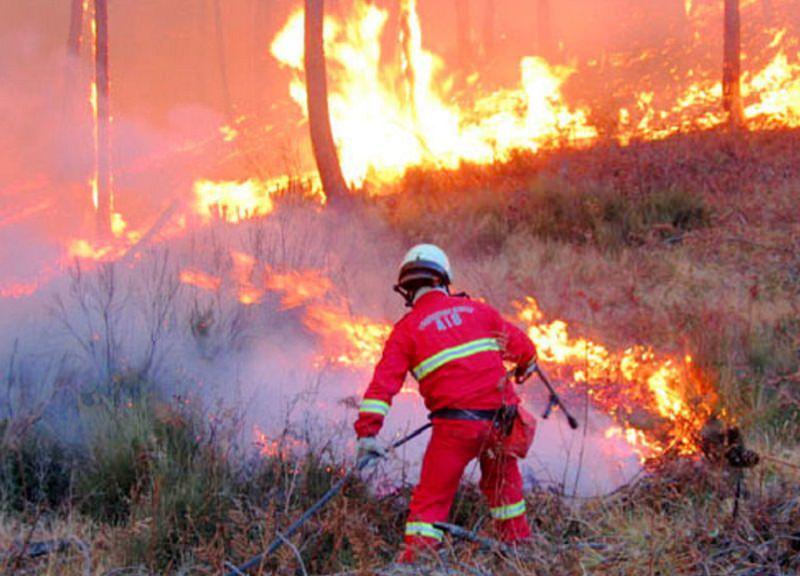 Palermo avvolta dalle fiamme: dodici ore di fuoco nella zona dell'Acquapark di Monreale