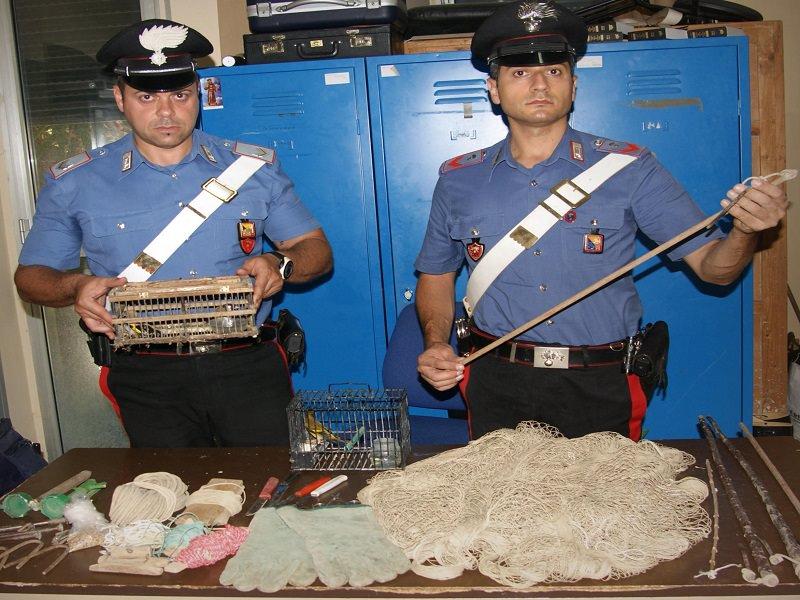 Bracconieri catturavano cardellini: denunciate tre persone