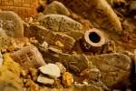 Pensionato compra terreno e scopre antica necropoli di età romana: la STORIA del sensazionale ritrovamento