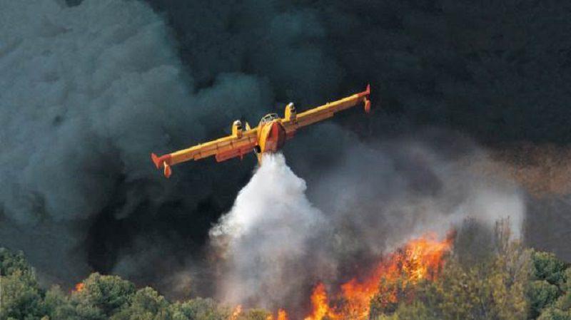 In fiamme 10 ettari di castagneti e querce nel Catanese: uomini del Corpo Forestale sul posto
