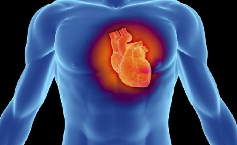 La cardiomiopatia restrittiva