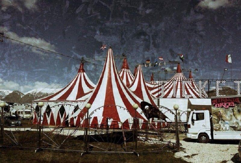 Famiglia inDifesa e Circo Orfei insieme: raccolta fondi per terremotati del Centro Italia