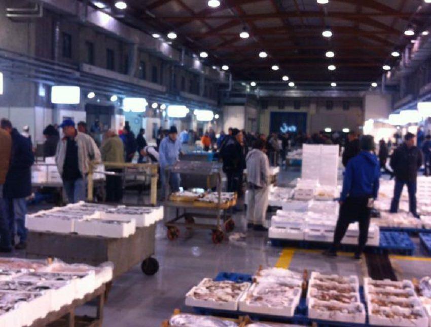 Nuovo sistema di registrazione e tracciamento al mercato ittico di Palermo