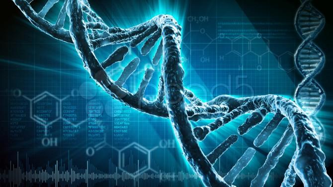 Diagnosi prenatale per le anomalie cromosomiche con NIPT
