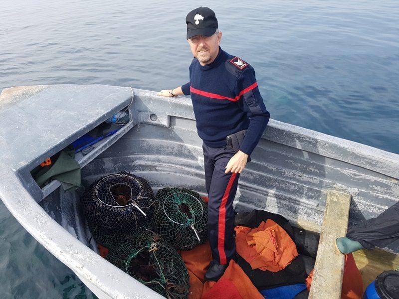 Trovati circa 1100 ricci di mare: multato pescatore palermitano