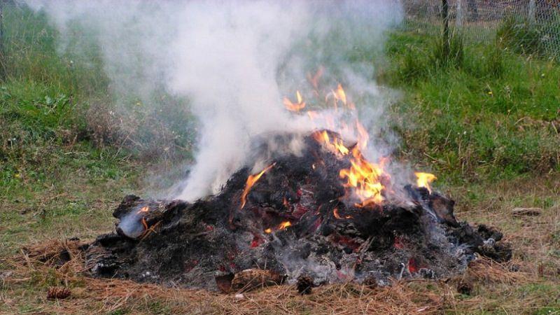 """Operaio forestale appicca il fuoco per """"smaltire"""" i rifiuti"""